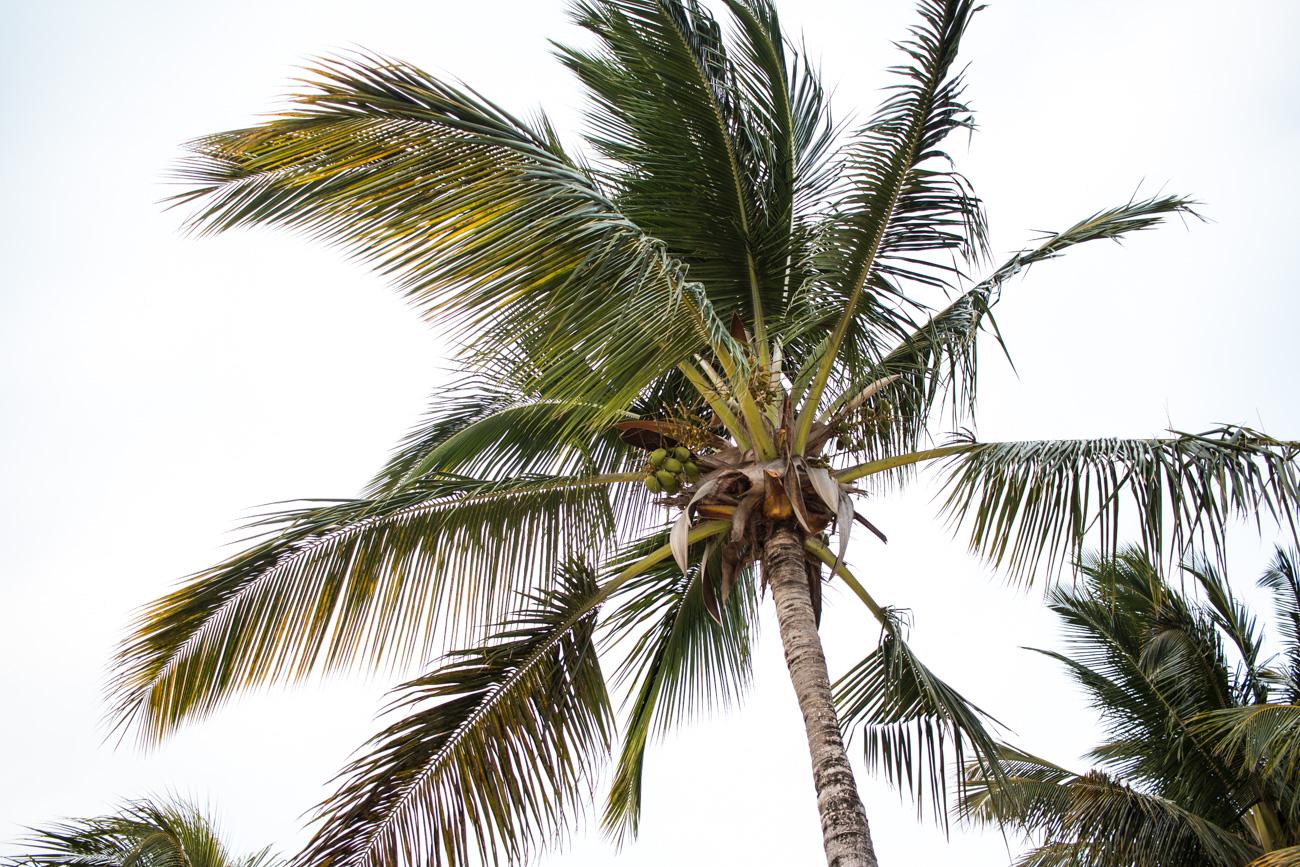 Mauritius-Heritage-Resorts-Day-2-34