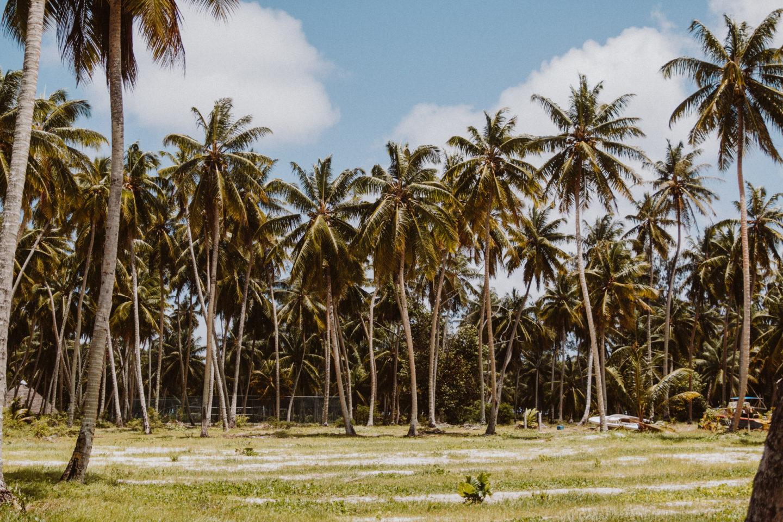 La Digue | Seychelles